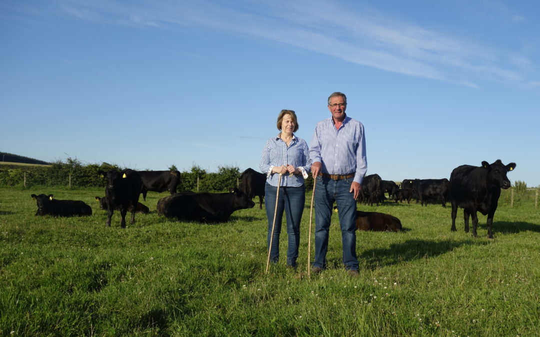 Passion and bloodlines are the key to success for the Deveron Herd