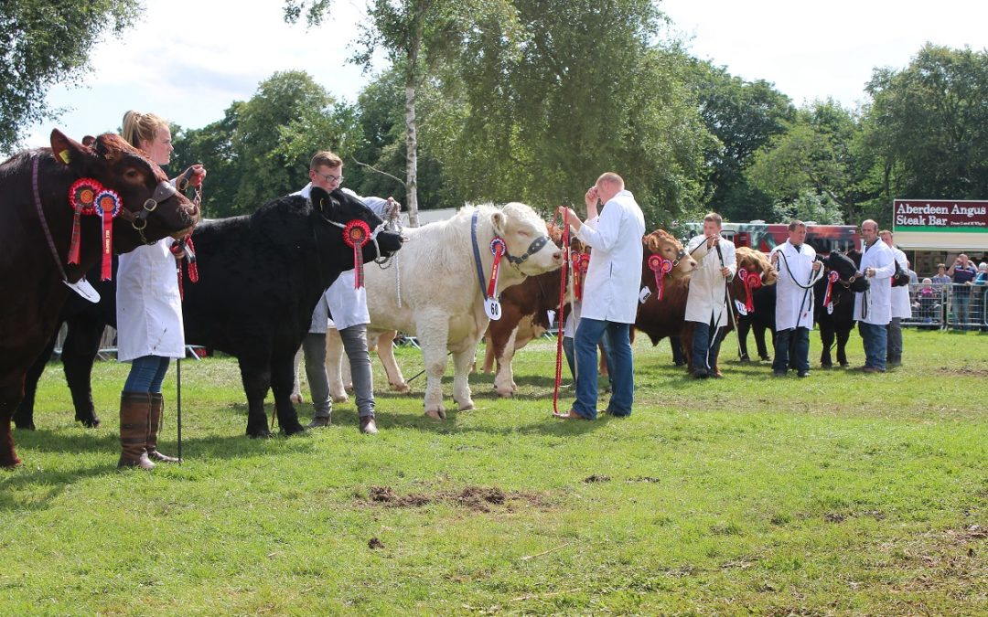 Turriff Show To Be Cancelled For A Second Year